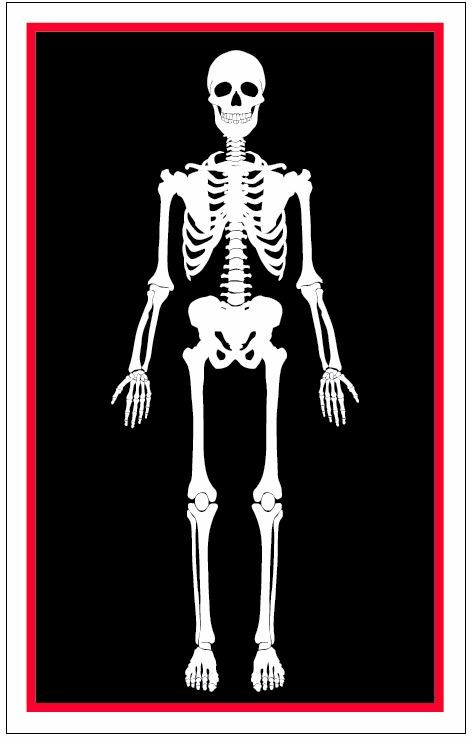 horrific skeleton metal playing card
